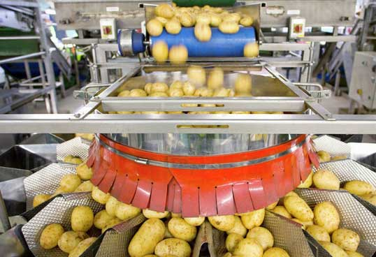 3 Key Machine Vision Applications that Add Value to Food Inspection
