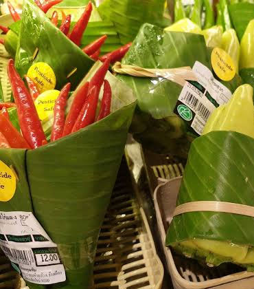 Can Banana Plants be Used as a Packaging Alternative?