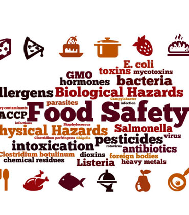 How Technology is Improving Food Quality