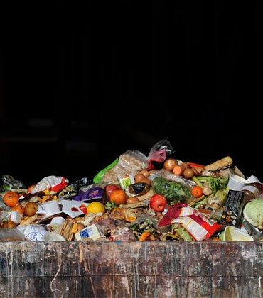 7 Technology Tips for Food Enterprises to Minimize Waste