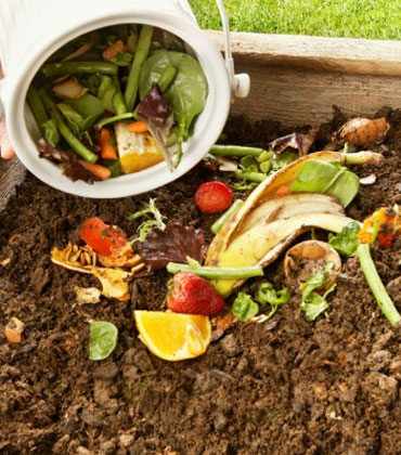 Contributing to Food Waste Management with Groundbreaking Technologies