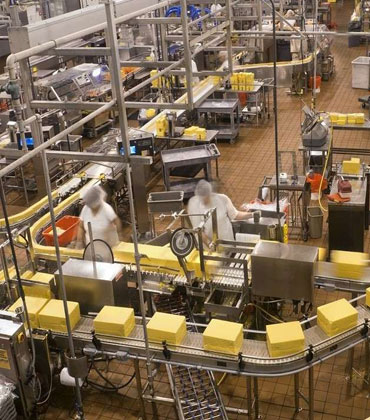 How the Food Industry Leverages Technology to  Improve Food Processing and Packaging  Platform?