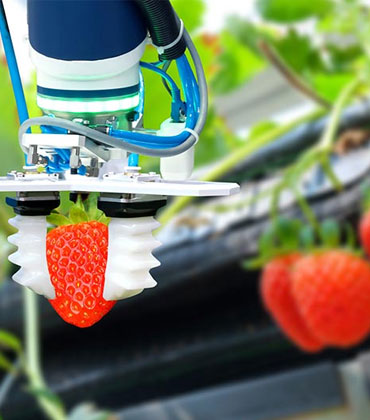Food and Beverage Industry Embraces Automation