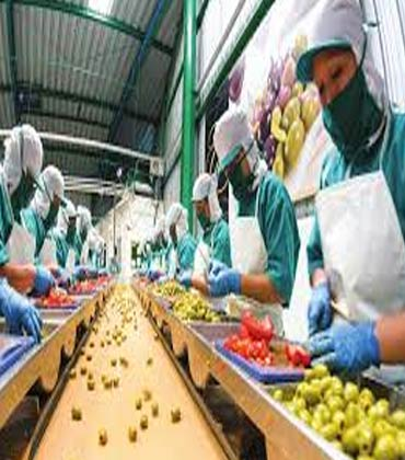 Developing a Strengthened Food Safety with Food Safety Management Software