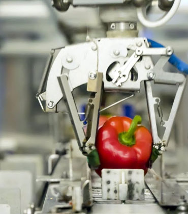 Is That a Robot Packing the Food?