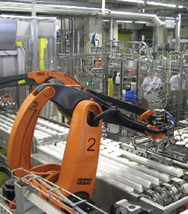 Can Automation Help In Boosting the Food Industry Efficiencies?