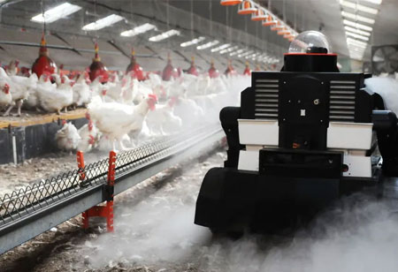 Harnessing Technology in Poultry Production