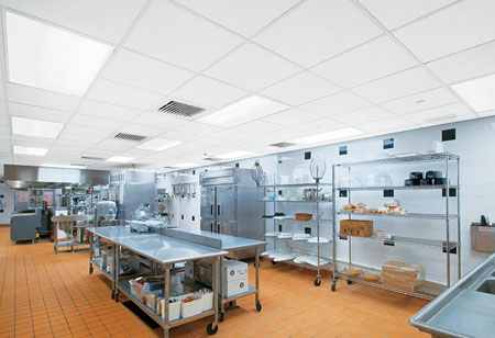 What type of Hygienic Designs must the Food Processor Companies Use