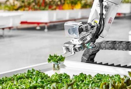 How Is Technology Accelerating the Growth of the Food Industry?
