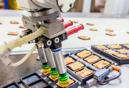 What are the Benefits of Robotics and Automation in the Food Industry?