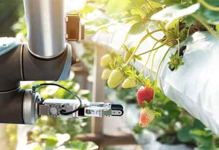 How Technology Tools Can Help Enhance Food Safety