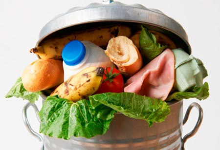 How Technology can stop the Wastage of Food