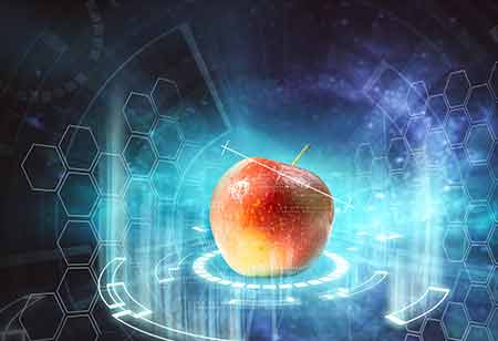 Can Technology Aid in Ensuring Food Safety and Authenticity?