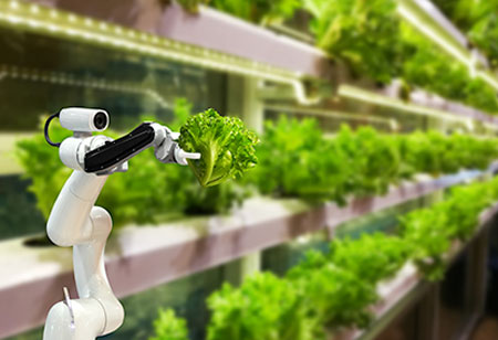 What is the Future of AI in Food and Beverage Industry?