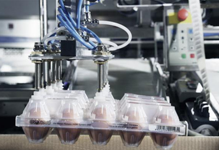 An Overview of the Benefits of Industrial Food Packaging Automation