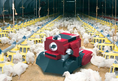 How Artificial Intelligence Can Benefit Poultry Farms