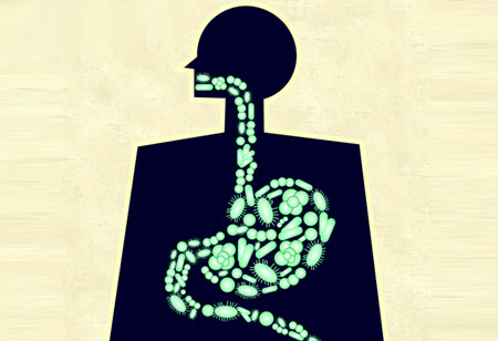 Gut Microbiome Research: How is it Transforming Medicine?