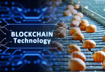 Blockchain to Solidify Trust in the Food Industry