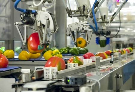 How Automation Helps Food Sector