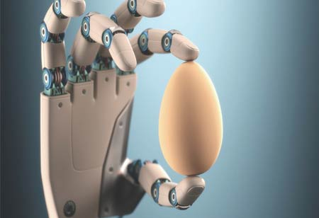 Challenges of Automation in the Food Industry