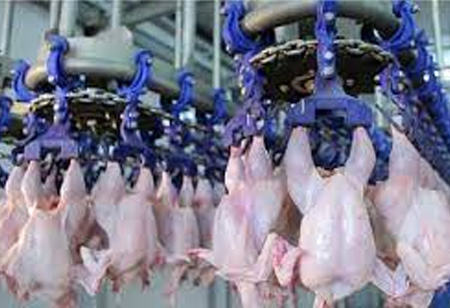 Meatable Raises $47 Million Series A  Funding