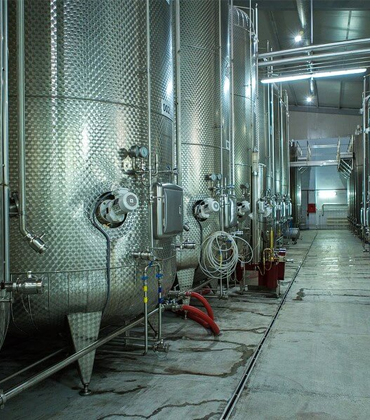Monterey Wine Company: Where Winemaking Gets a High-Tech Makeover